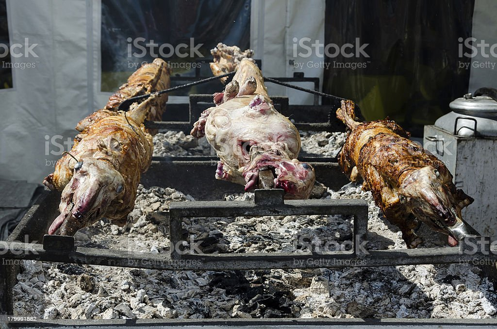 Roasting a lambs stock photo