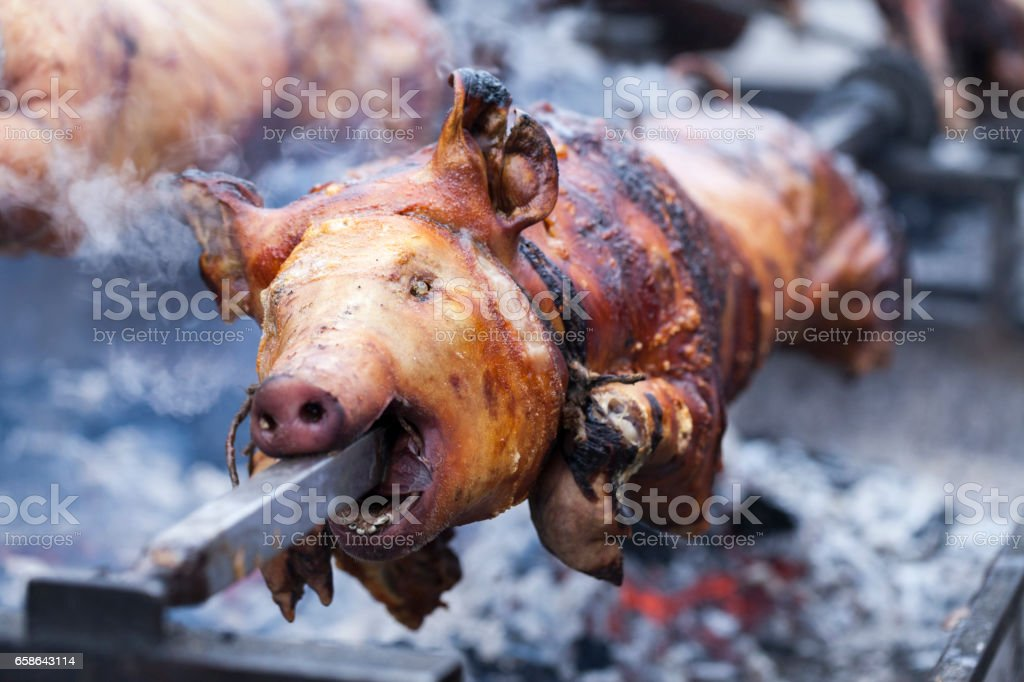 Roasting a pig on a spit stock photo