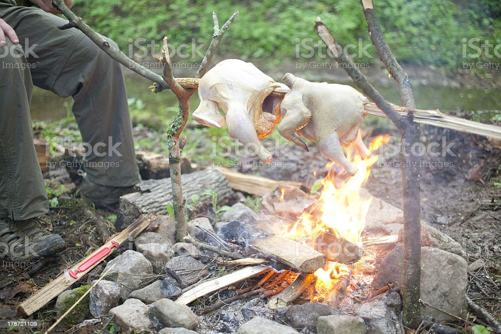 Roasting Chicken over a Campfire royalty-free stock photo