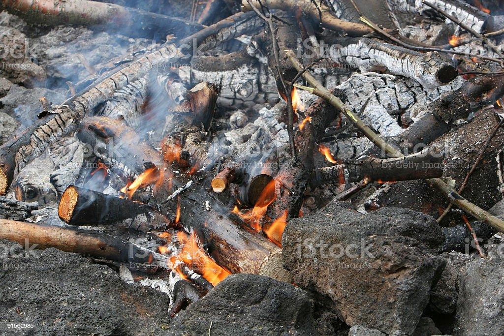roasting fire royalty-free stock photo