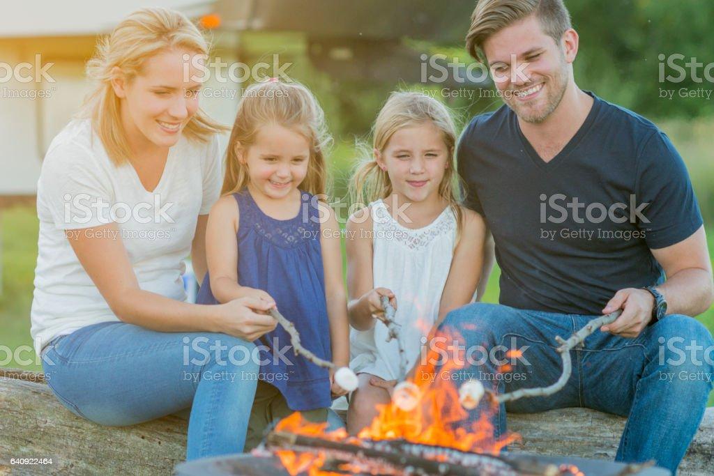 Roasting Marshmallows Around the Fire stock photo