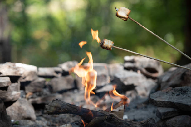 Roasting Marshmallows over a camp fire. stock photo