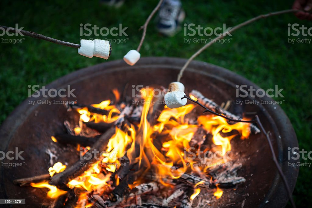 Roasting Marshmallows Over a Fire Pit of Burning Wood stock photo