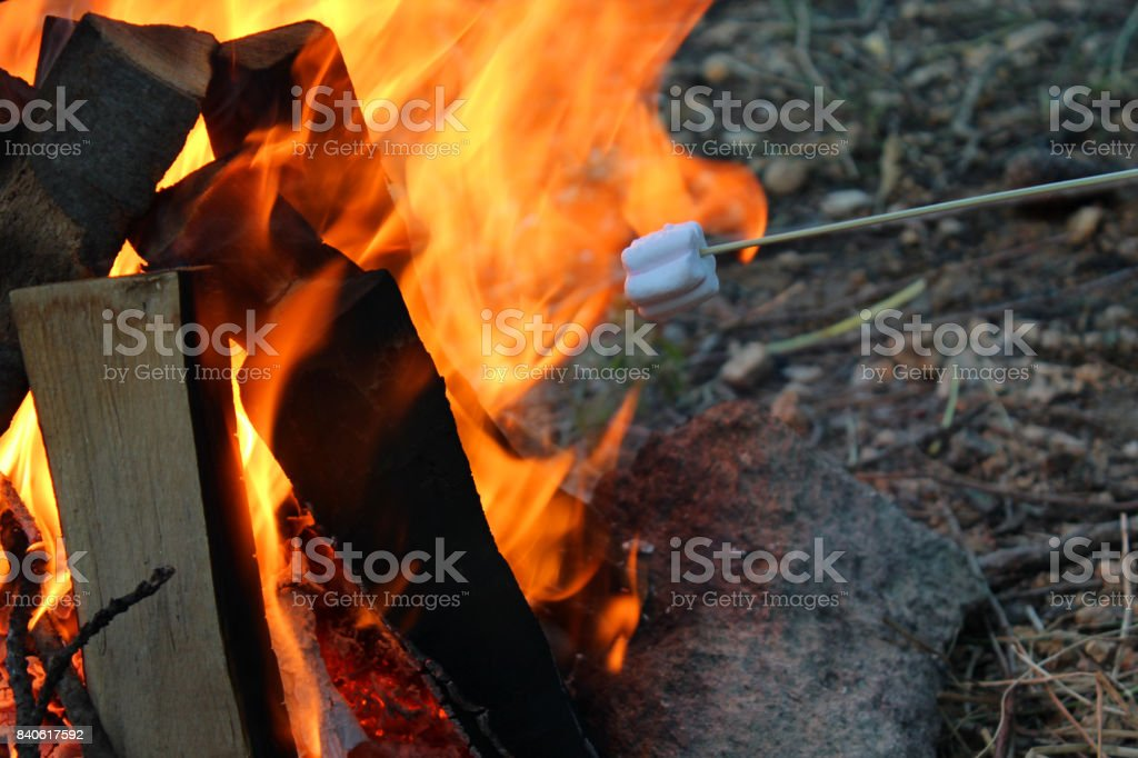 Roasting Marshmallows Over Campfire Royalty Free Stock Photo
