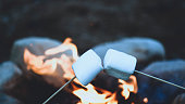 roasting marshmallows over a camp fire , shot for copy space filter used blurred background for text overlay