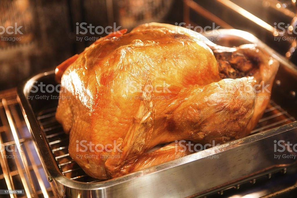 RoastingThanksgiving Turquia no forno - foto de acervo