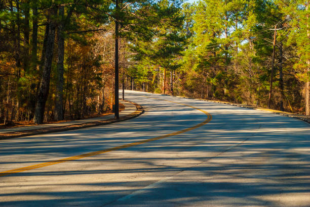 Robert E Lee Boulevard in Stone Mountain Park, Georgia, USA The turn of the Robert E Lee Boulevard with long shadows of trees in the Stone Mountain Park in sunny autumn day, Georgia, USA robert e. lee stock pictures, royalty-free photos & images