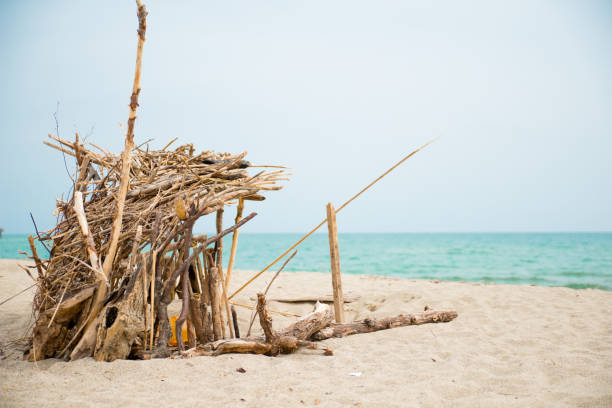 robinson crusoe refugee handmade shelter by the sea in abandoned shore of isolated island robinson crusoe refugee handmade shelter by the sea in abandoned shore of isolated island sheltering stock pictures, royalty-free photos & images