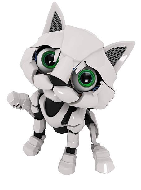 Robot kitten sitting picture id147025108?b=1&k=6&m=147025108&s=612x612&w=0&h=m lsusaa8utd51wj rgfn62ikh xaw4yiikvfrk s80=