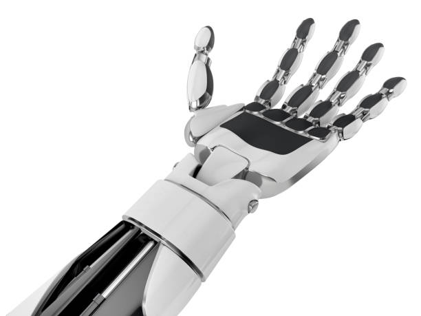 Robotic hand keeping empty palm, isolated on white background. Robotic hand keeping empty palm, isolated on white background. 3d illustration. prosthetic hand stock pictures, royalty-free photos & images
