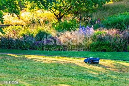 Automatic lawn mower in the morning.