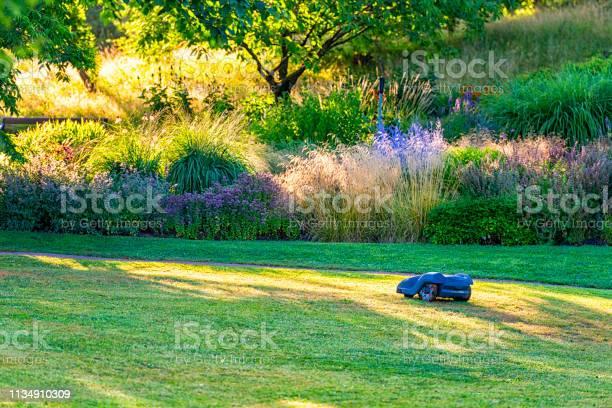 Photo of Robotic lawn mower