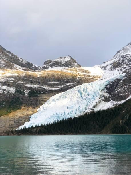 Robson glacier stock photo