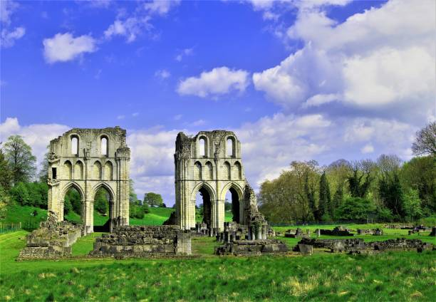 roche abbey, maltby, rotherham, south yorkshire - yorkshire meridionale foto e immagini stock