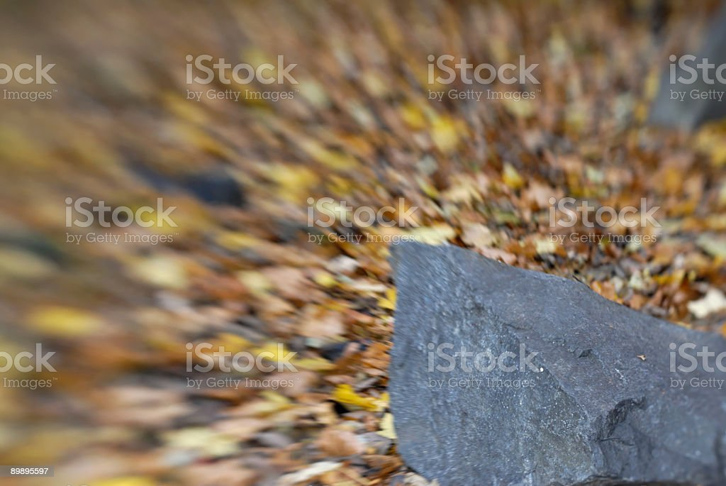 Rock and Leaves royalty-free stock photo