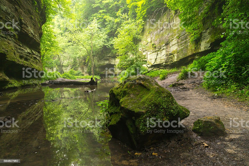 Rock and reflections in the Dells. stock photo