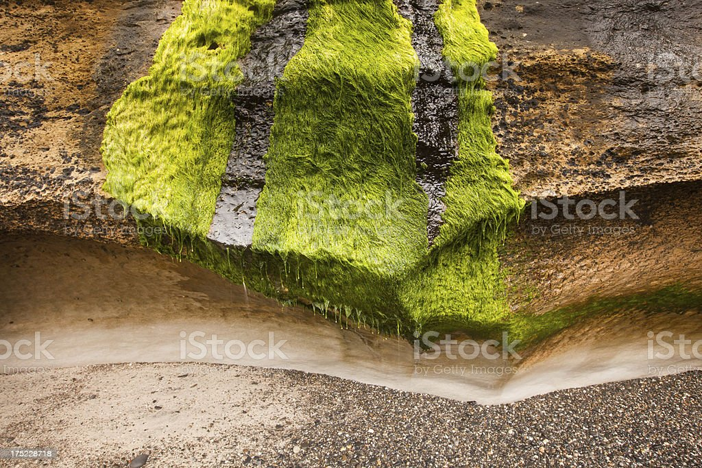Rock and shingle beach scene, Nelson,New Zealand royalty-free stock photo