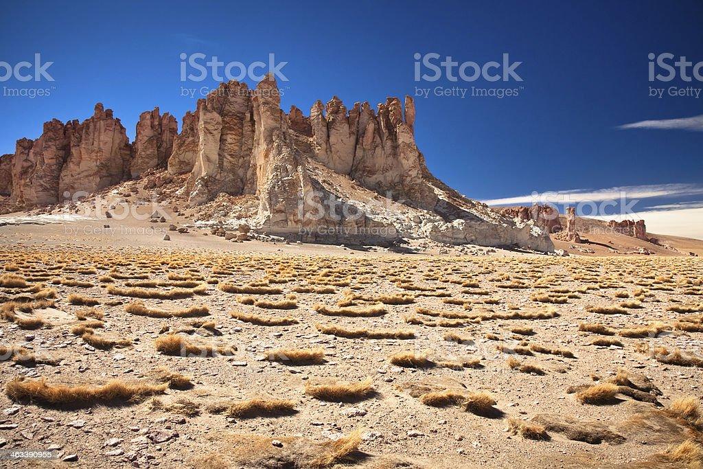 Rock cathedrals in Salar de Tara, Chile stock photo