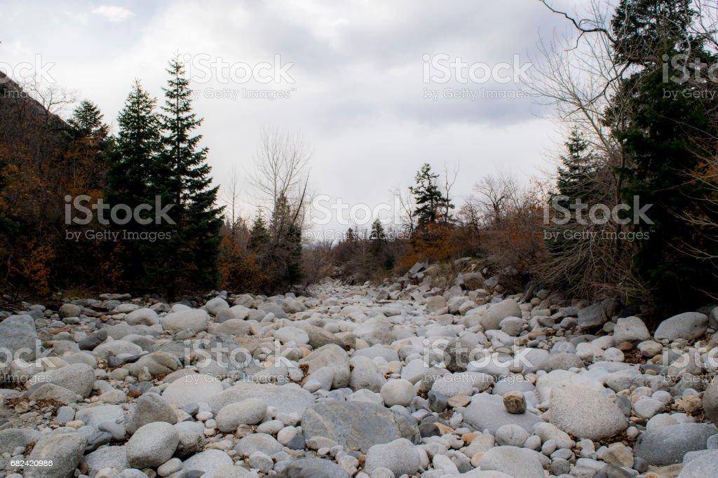Rock Field royalty-free stock photo