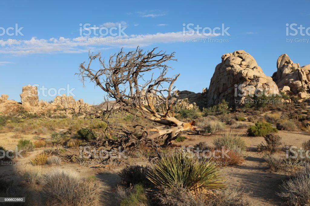 Rock Formation at Hidden Valley Trail in Joshua Tree National Park. California. USA stock photo