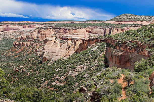 rock formation in colorado national monument, usa - półpustynny zdjęcia i obrazy z banku zdjęć