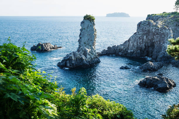 rock formation oedolgae in dark blue ocean at seogwipo, jeju island, korea - jeju island stock photos and pictures