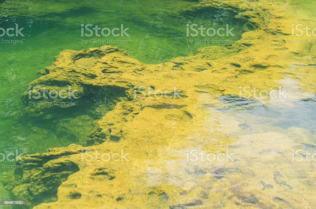 Rock formations at the bottom of a river with transparent green water stock photo