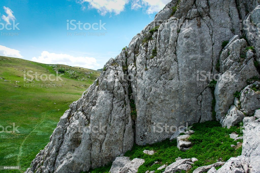 Rock in mountains covered with plants stock photo