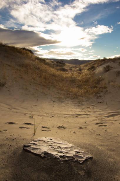 Rock In Sand In Desert stock photo