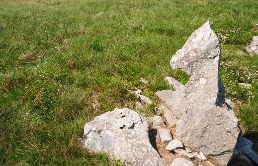 Zalipnik 밸리 안장 크로아티아 국경 근처 슬로베니아 Istria에 잔디에 누워 새끼 같은 바위 0명에 대한 스톡 사진 및 기타 이미지