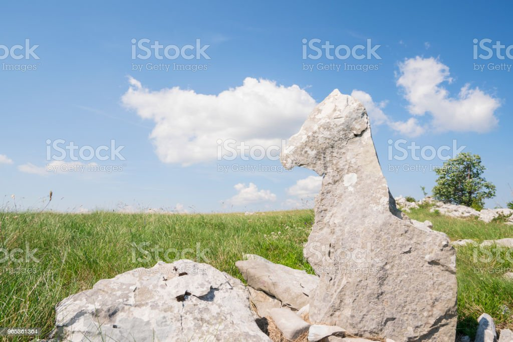 Rock like a foal lying on grass with white clouds on blue sky in backgroun on Zalipnik valley saddle, Slovenian Istria near Croatia border royalty-free stock photo