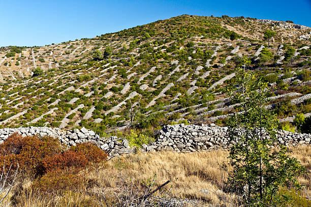 Rock mounds auf der Insel Hvar, Kroatien – Foto