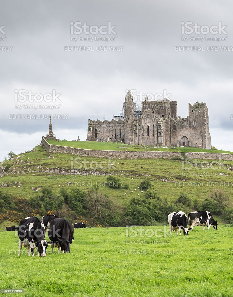 Rock of Cashel and pastures stock photo