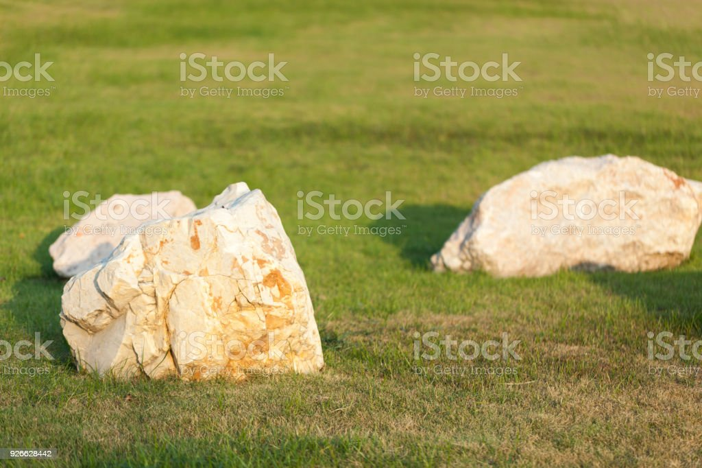 rock on grass in the park at thailand stock photo