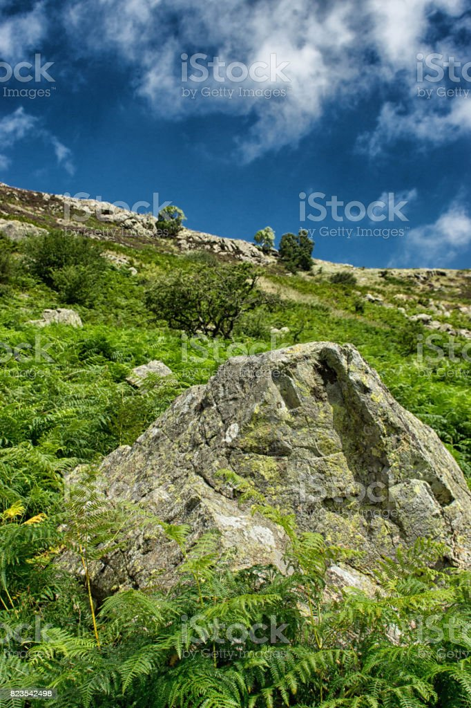 Rock on the banks of Ullswater stock photo