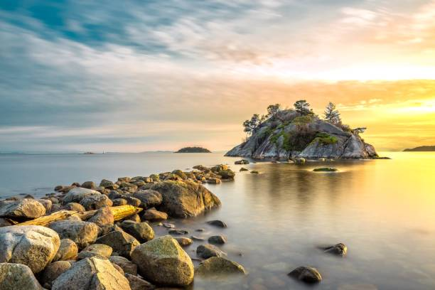 rock of eiland? het park van het eilandje van josephine - vancouver canada stockfoto's en -beelden