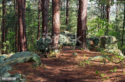 istock Rock Outcrop on Woodland Trail 694169708