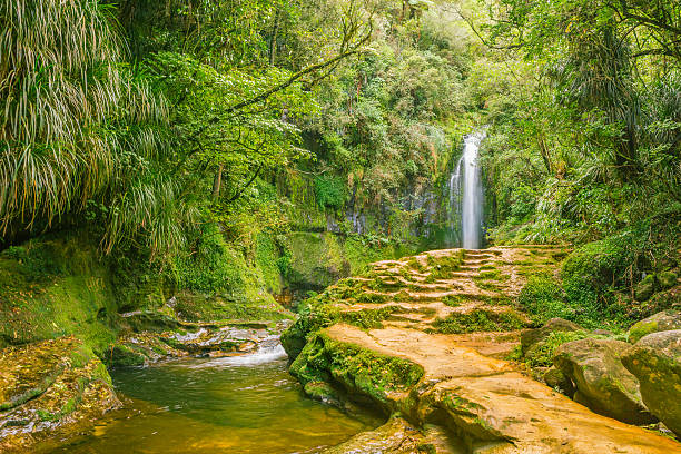 Rock path to the waterfall in the forest stock photo
