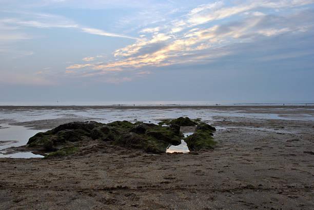 Rock pool in beach stock photo