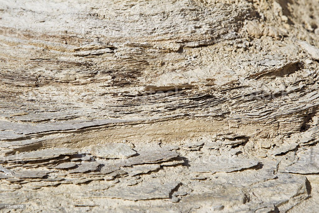 Rock Strata at Fossil Butte National Monument stock photo