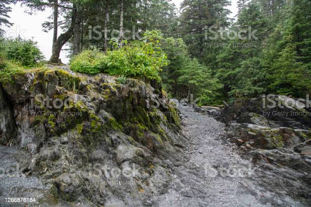 Photo of Rock wall and walking path background
