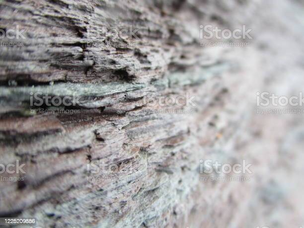 Photo of Rock wall background