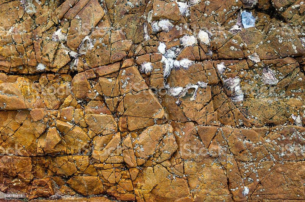 Rock weathering the sea , Thailand . stock photo