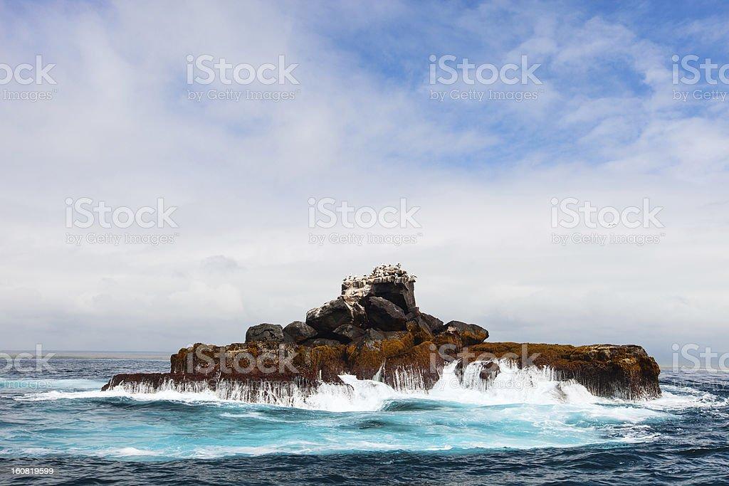 Rock con las aves marinas - foto de stock