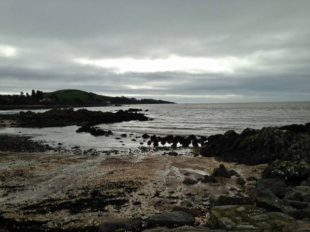 a rockcliffe spring morning - mcdermp stock photos and pictures