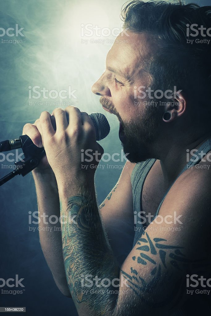 Rocker Sings in Concert royalty-free stock photo