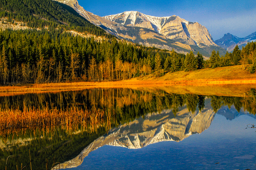 Rockies reflected in Middle Lake. Bow Valley Provincial Park. Alberta, Canada