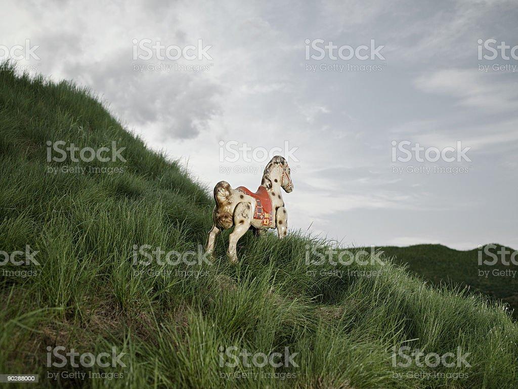 Cheval à bascule dans un champ - Photo