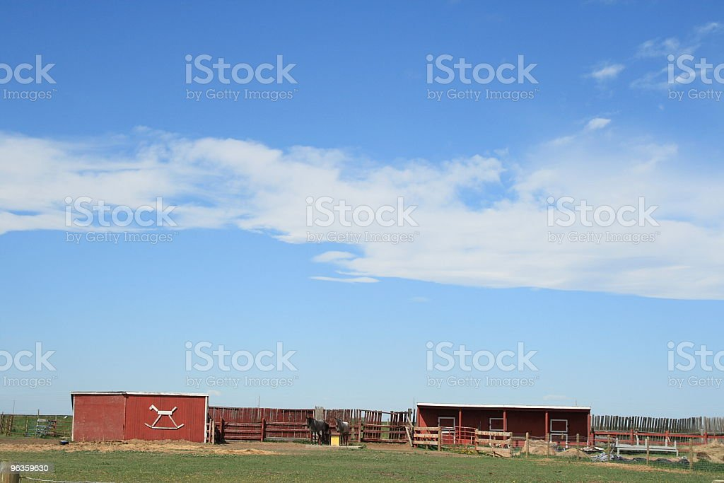 Rocking or real horse farm? royalty-free stock photo