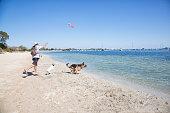 Dogs enjoying the beach in Rockingham Western Australia